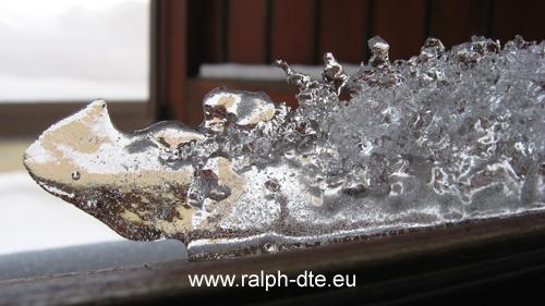 Scultura di ghiaccio naturale - RinoDrago