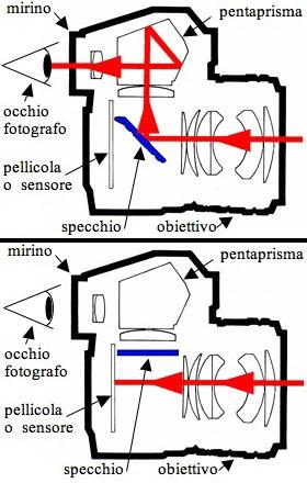 specchietto_reflex_articolo-ralph-dte.jpg