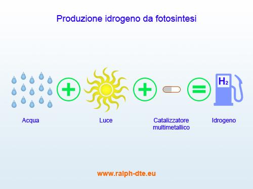fotosintesi_produzione_idrogeno.jpg